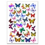 Бабочки 1 вафельная картинка